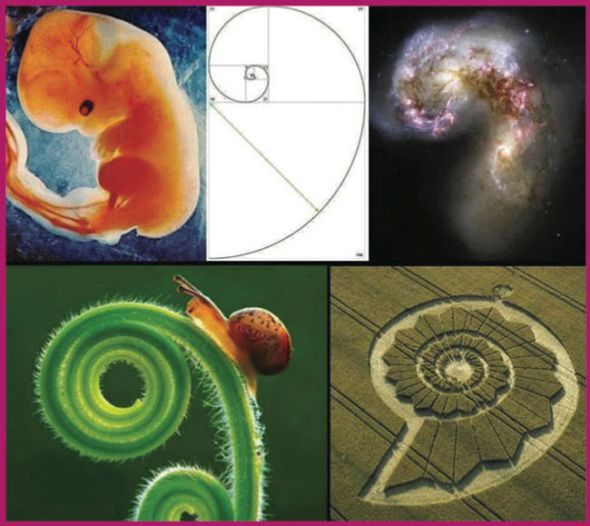 Embryology Spirit and Essence Workshop – April 2016